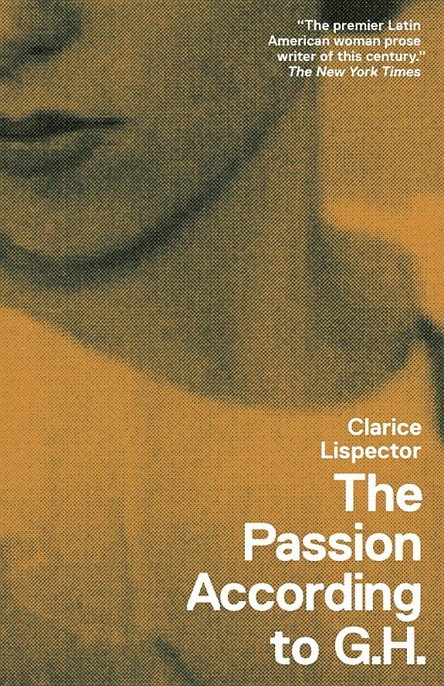 Read The Passion According to G H  by Clarice Lispector